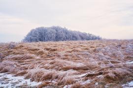 Polne fale zimą....