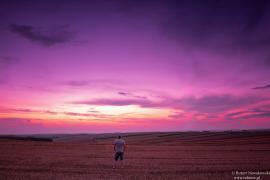 Zachód Słońca na polach Sułoszowej...