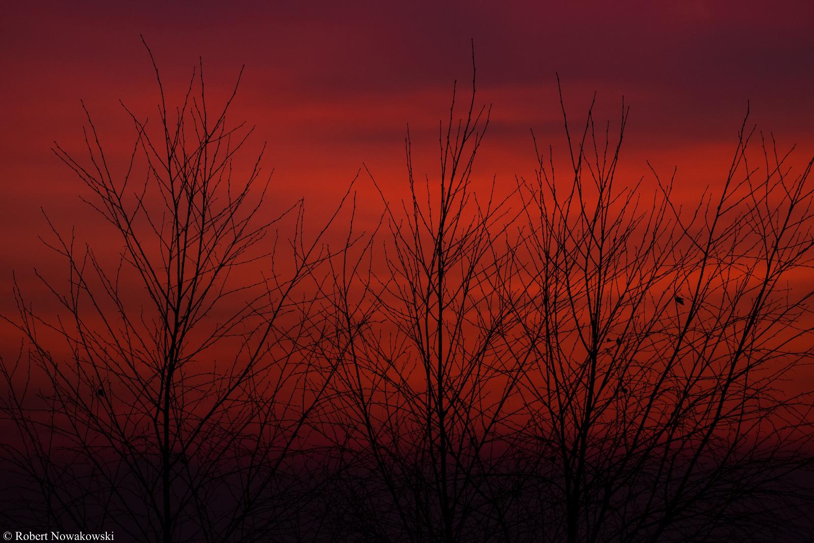 Zachód Słońca u nas na wsi widziany z Czubatki...