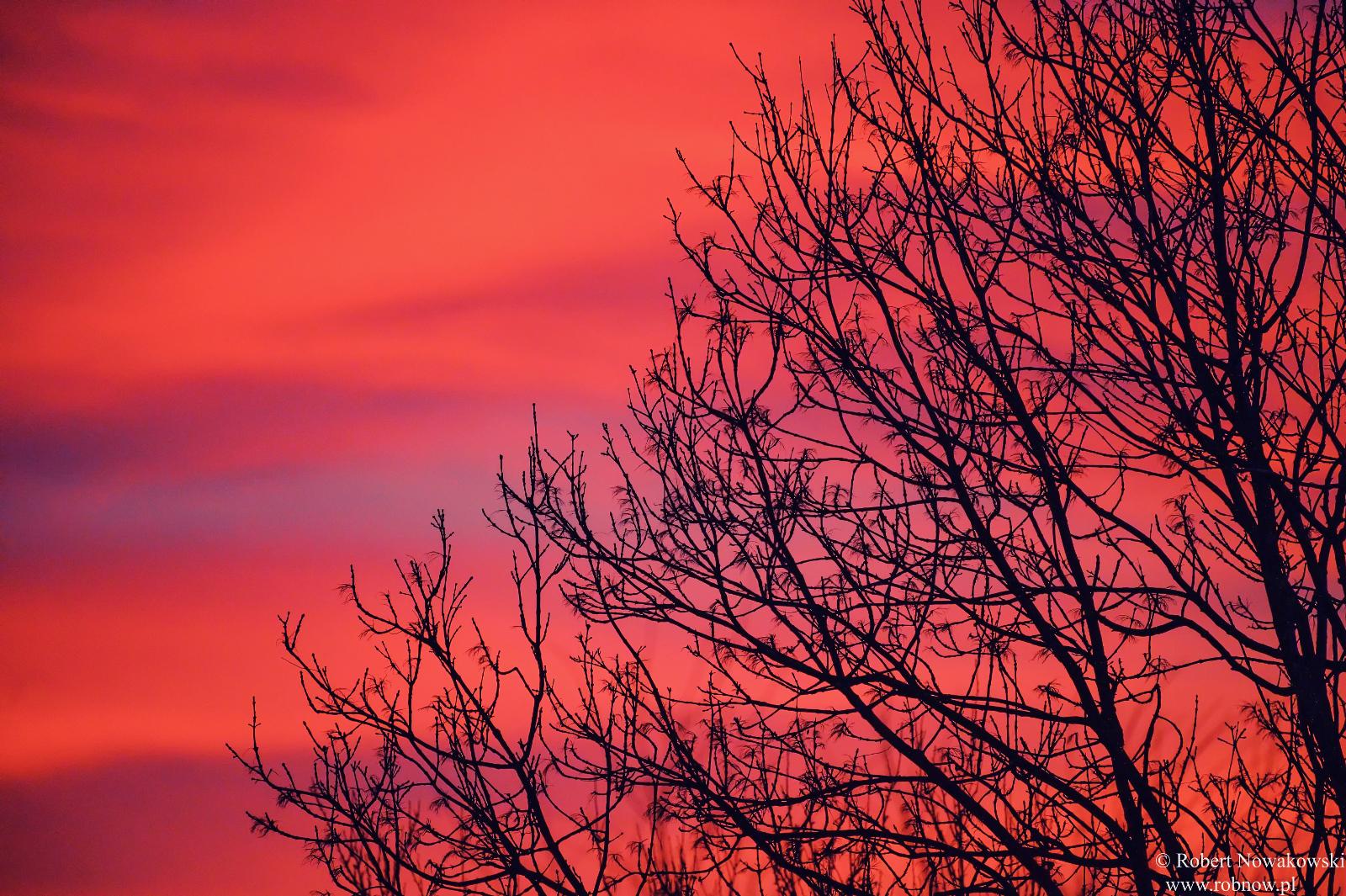 Grudniowy zachód Słońca...